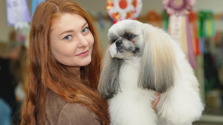 «Нет денег — работай лучше»: история Насти Котовой, превратившей детское хобби в семейный бизнес