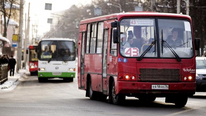 Ярославцы стонут от работы транспорта: в мэрии рассказали о вале жалоб от горожан