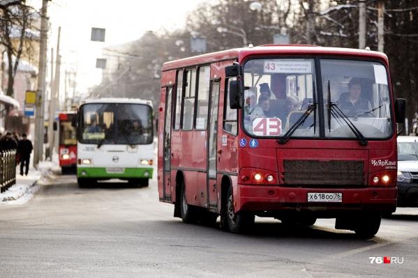 Ярославцы жалуются, что транспорт не соблюдает расписание