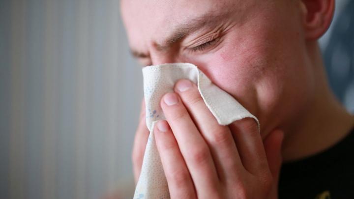 Резкий запах аммиака в Ярославле: было больно дышать и жгло глаза. Что случилось