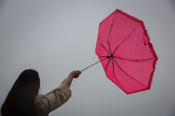 Возможны порывы ветра до 20 метров в секунду
