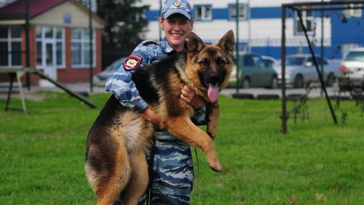 Наша служба и опасна и мила: фоторепортаж из центра, где живут собаки-полицейские