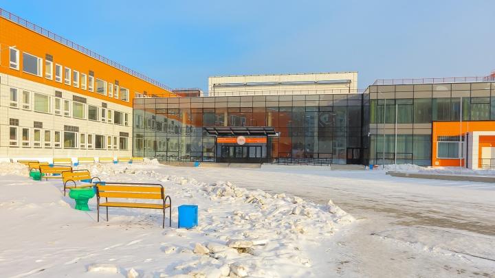 На школьных дворах в Красноярске запретили выгуливать собак