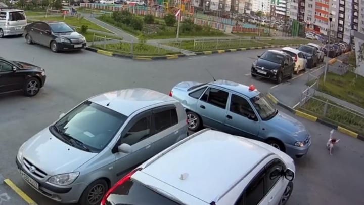В тюменском дворе машина такси сбила шестилетнюю девочку