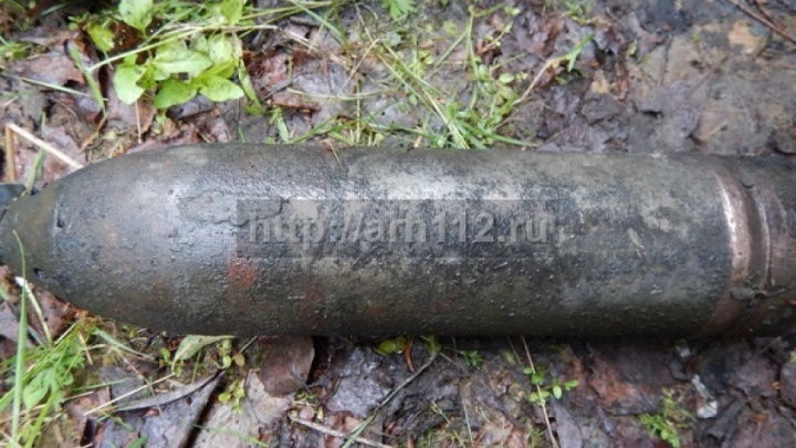 Взрывоопасный снаряд времен интервенции в Виноградовском районе обнаружил случайный прохожий