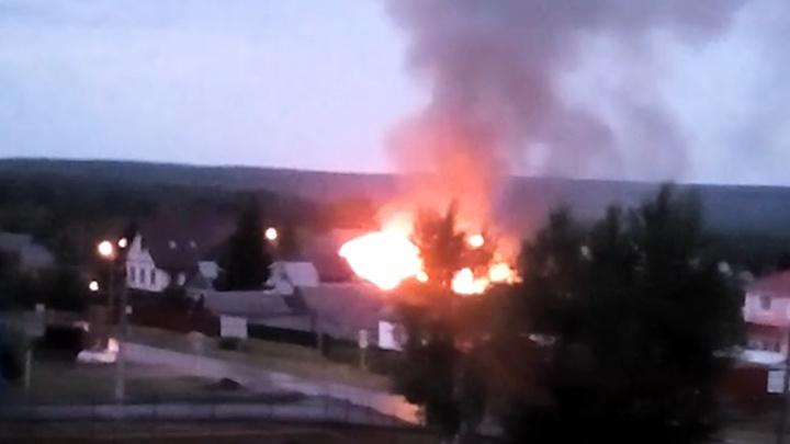 В огне погибли животные: в Самарской области произошел крупный пожар