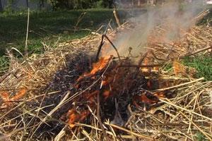 Лесной пожар в Башкирии: огонь бушует на площади в 14 футбольных полей