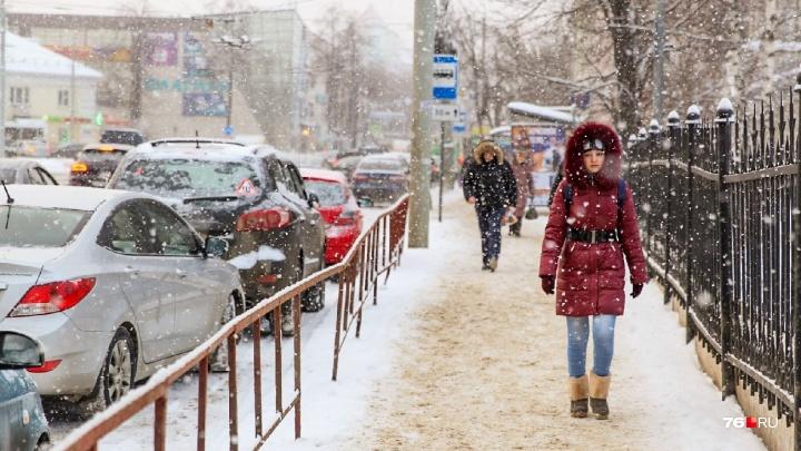 Желтый уровень опасности: синоптики предупредили об ухудшении погоды в Ярославле