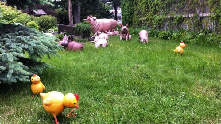 Ярмарка в Уфе: покупаем все для сада и огорода