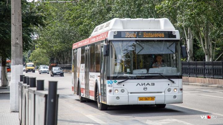 «Они всегда там стояли»: администрация Волгограда не видит проблем в парковке автобусов под окнами