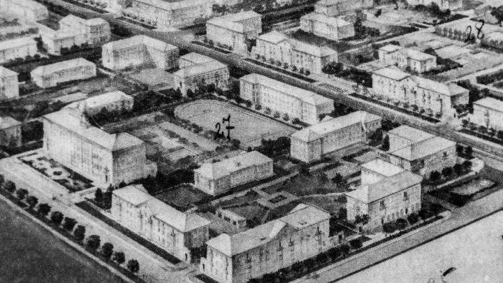 «Город никогда»: потерянные сады Новосибирска