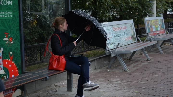 Синоптики объявили на Урале штормовое предупреждение из-за шквалистого ветра