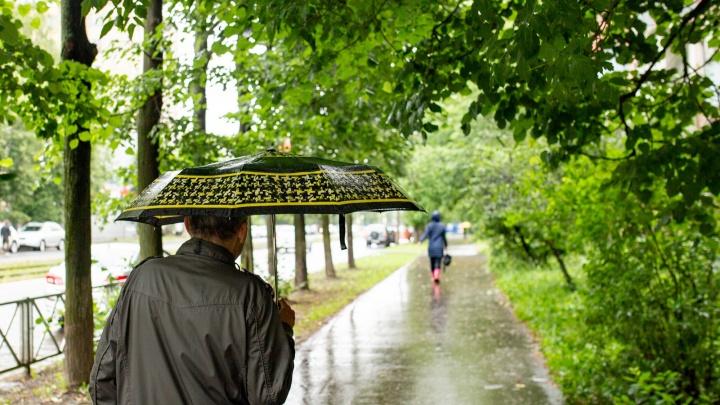 «Будет мокро и ветрено»: сколько осадков обрушится на Русскую равнину