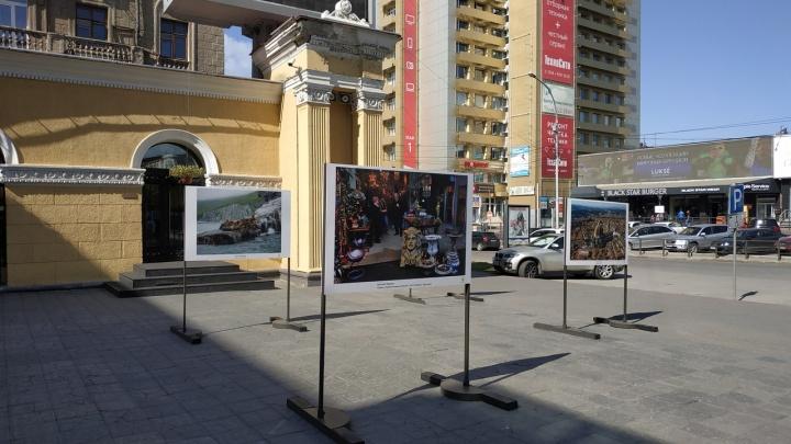 Возле «Победы» смонтировали выставку четырёх популярных новосибирских фотографов