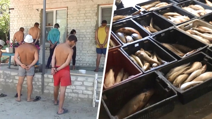 15 дончан задержали в Волгоградской области по подозрению в браконьерстве
