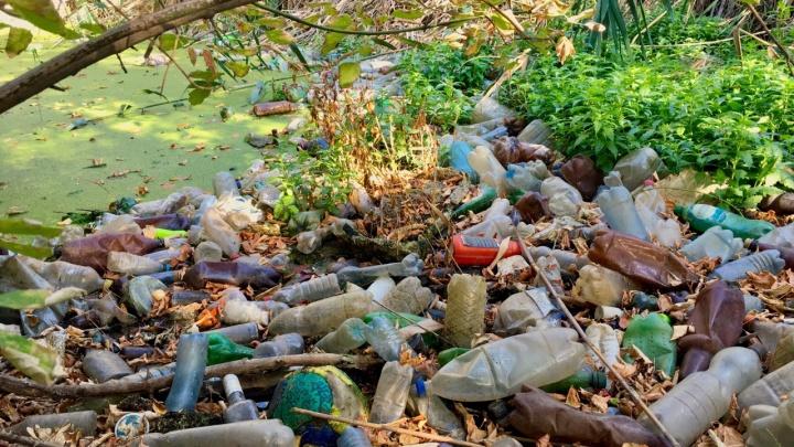 «С каждым разом всё меньше людей»: волгоградцы пытаются спасти от мусора свой маленький «Дунайчик»