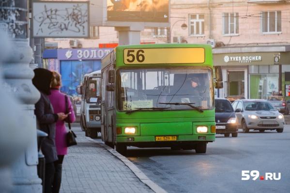 Таблички с расписанием автобусных маршрутов обновят на 174 остановках