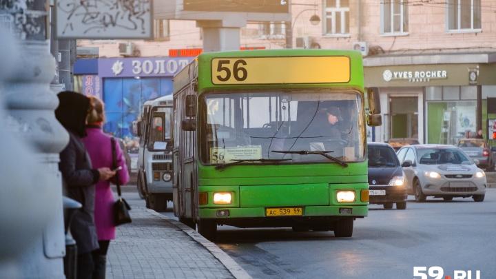 В Перми на остановках поменяют таблички с расписанием маршрутов