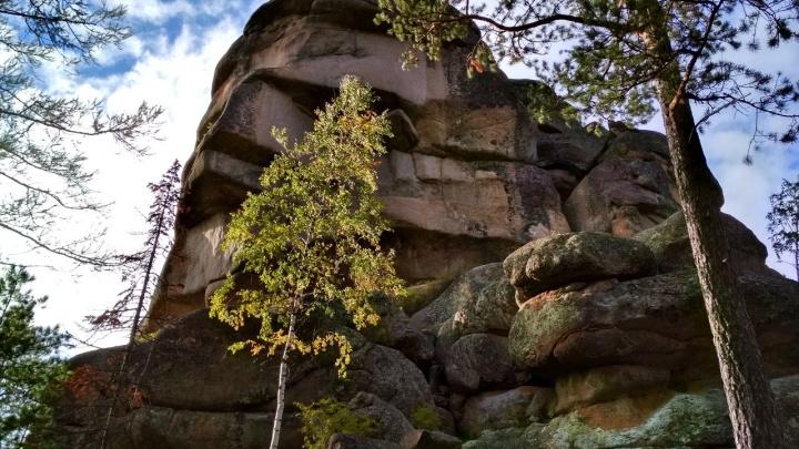 На «Столбах» туристка сорвалась со скалы и сломала ногу