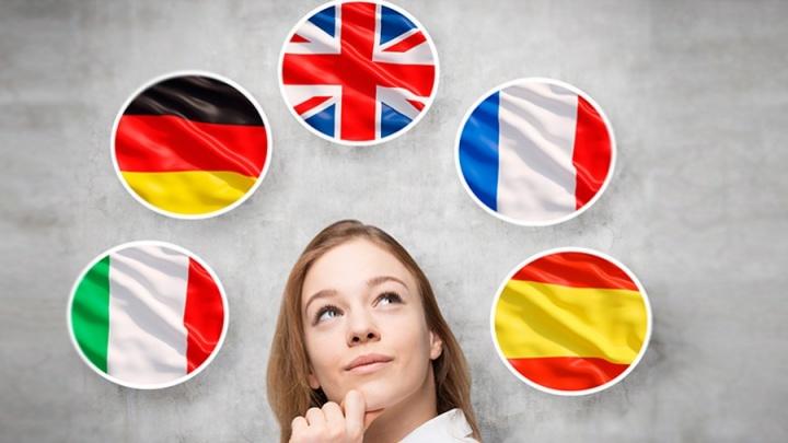 Давай, лама, давай: зачем изучать иностранный язык, где и как лучше всего это делать