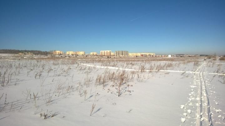 В Челябинске сорвали конкурс на строительство посёлка для гостей саммитов ШОС и БРИКС