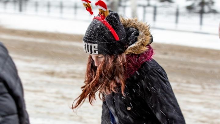 «Гололедица и порывистый ветер»: в Ярославле МЧС разослало экстренное предупреждение