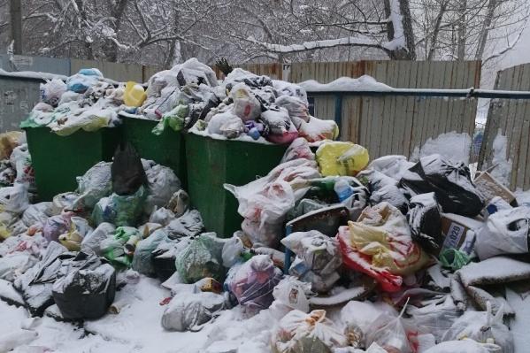 Новый концессионер заявил волгоградцам о своем собственном графике уборки