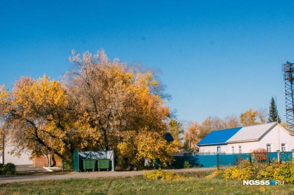 Новые санитарные площадки в Омске монтируют с опозданием и не так, как решил горсовет
