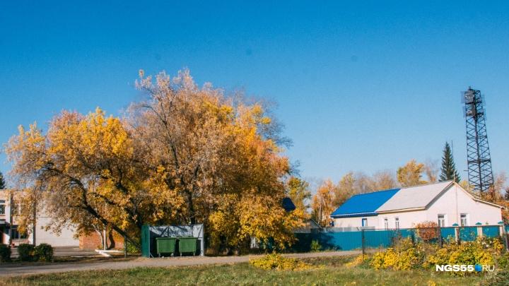 В омском частном секторе вместо обещанных 840 площадок для мусора сделали меньше трети