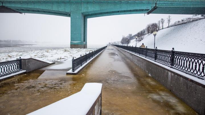 Уходим под воду: в Ярославле зимой затопило набережную. Фото и видео с места