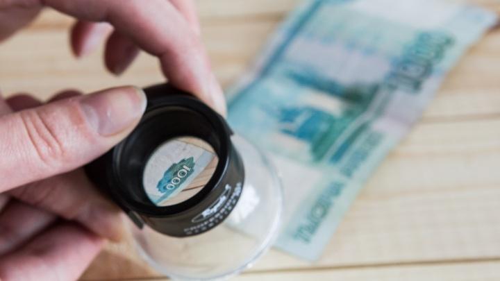 В Новосибирской области нашли 430 фальшивых купюр