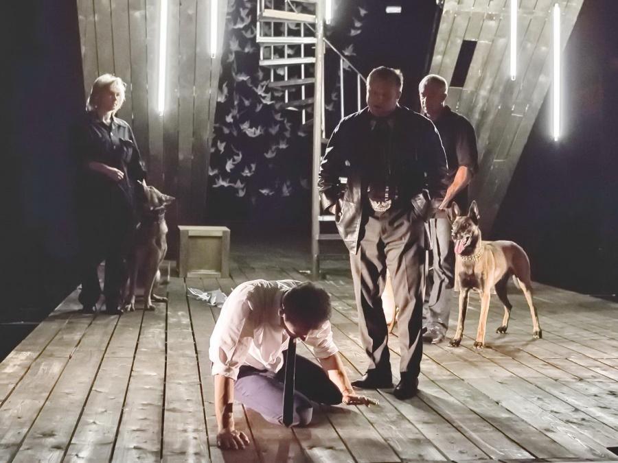 Вновом спектакле омского драмтеатра впервый раз сыграли служебные собаки