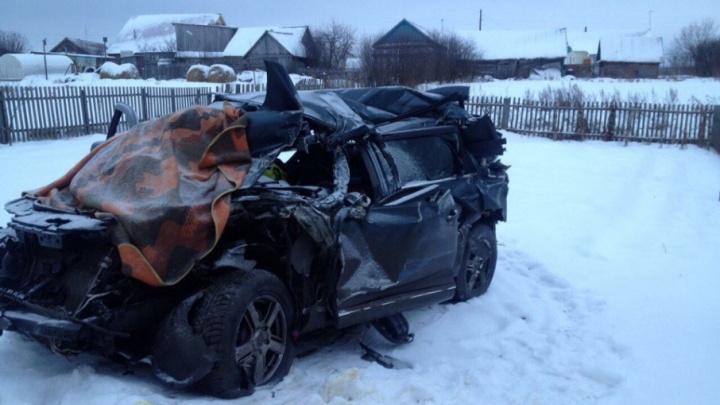 «Надеемся найти кота»: после аварии на трассе Уфа — Челябинск семья потеряла любимца