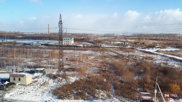 «Уже ставят забор»: в челябинском микрорайоне уничтожили берёзовую рощу