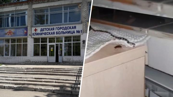 Пищеблок под снос: в Минздраве рассказали, как избавятся от тараканов в детской больнице № 1