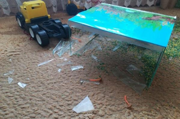 Инцидент произошёл в конце мая в частном детском саду «Смешарики»