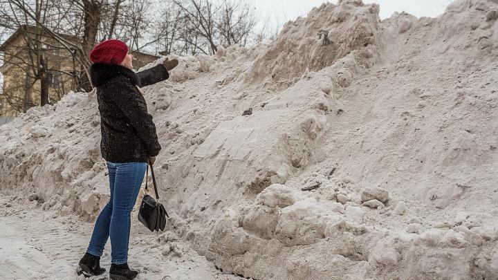 Мэрия: дорожники не должны были вывозить снег, за который жители заплатили 110 тысяч. Деньги им не вернут