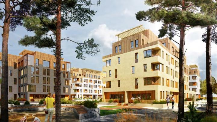 На Широкой Речке построят новый микрорайон с домами от 5 до 8 этажей: разглядываем проект