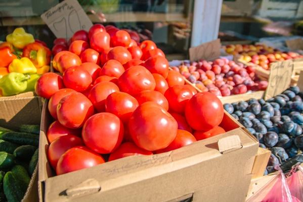 Овощеводы добиваются права собственности на новые теплицы