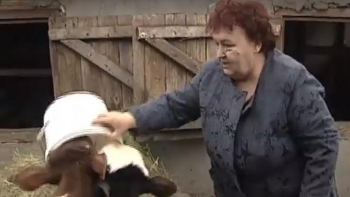 Хозяйка фермы в Ростовской области едва не оказалась в колонии из-за государственного гранта