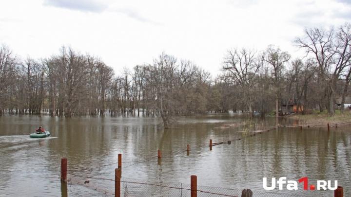 На реке в Уфе перевернулась резиновая лодка: пострадал двухлетний ребенок