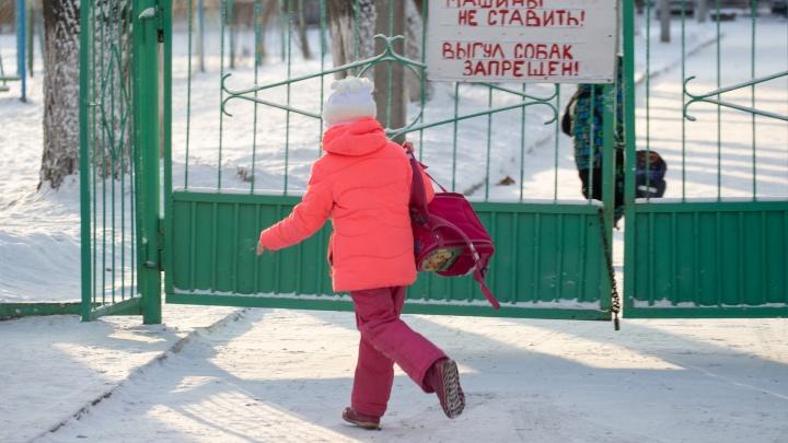 Мороз начал спадать: рассказываем, как сегодня учатся школьники второй смены