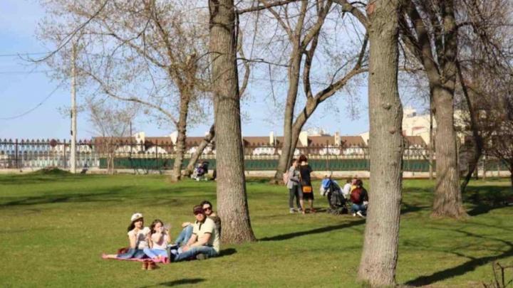И зимой, и летом: в Загородном парке хотят установить новые аттракционы
