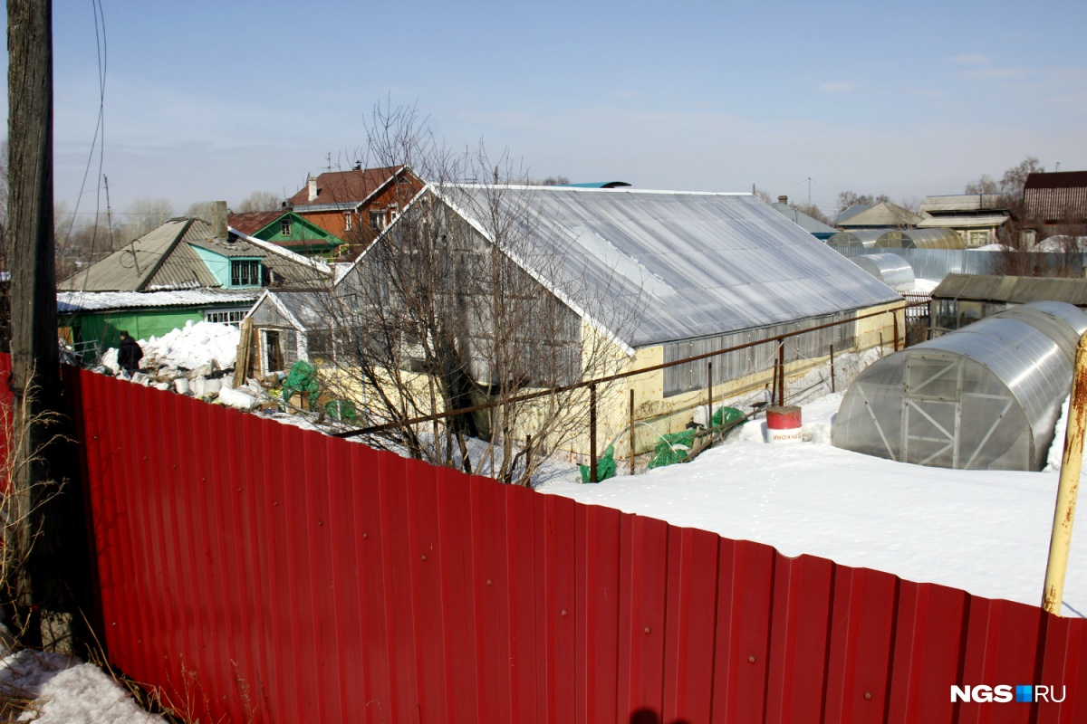 Теплица расположена на приусадебном участке частного дома в Матвеевке