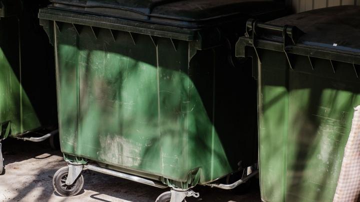 В Прикамье на вывоз мусора потратят 2,2 миллиарда рублей