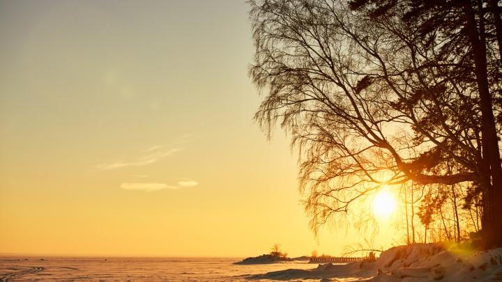 «Готовится к новому витку»: астрономы заявили, что на Солнце стало меньше пятен