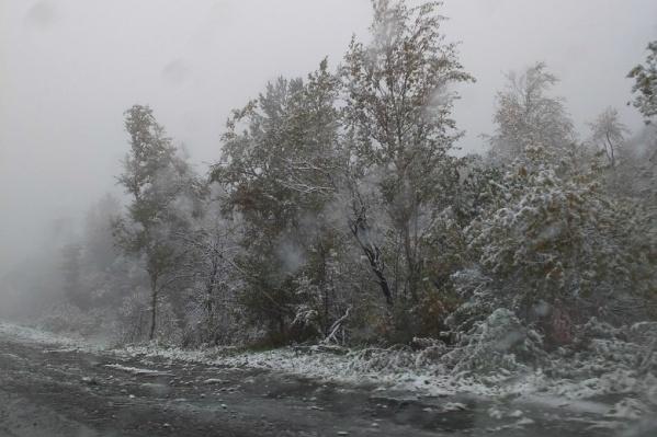 Снег выпал пока только на территории горнозаводской зоны