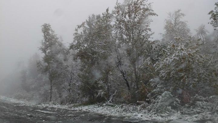 «Ещё вчера тут были лужи»: в Челябинской области выпал первый снег