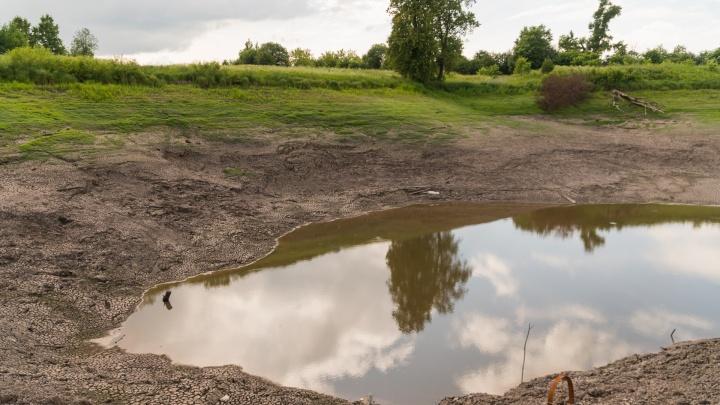 Озеро проблем. Как в прикамском поселке разворовали водопровод и создали «семью депутатов»