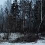 «Спилят полторы тысячи деревьев»: челябинцев возмутила вырубка в сквере вдоль «тропы здоровья»